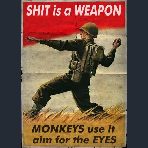 Shit is a weapon.jpg