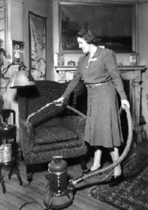 Women Vacuuming.png