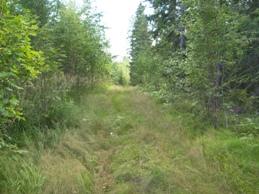 Kuva-Kuopio-Siilinjärvi moottoritie.jpg