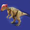 パキケファロサウルス.jpg