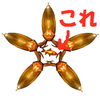 Golden bug2 ninjastar.png