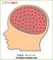 Tomato brain.jpg