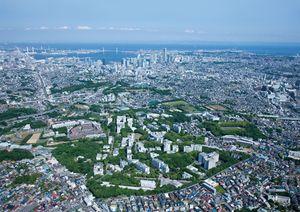 国立 大 横浜