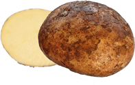 Half potato.png