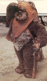 Ewok Desciclopedia