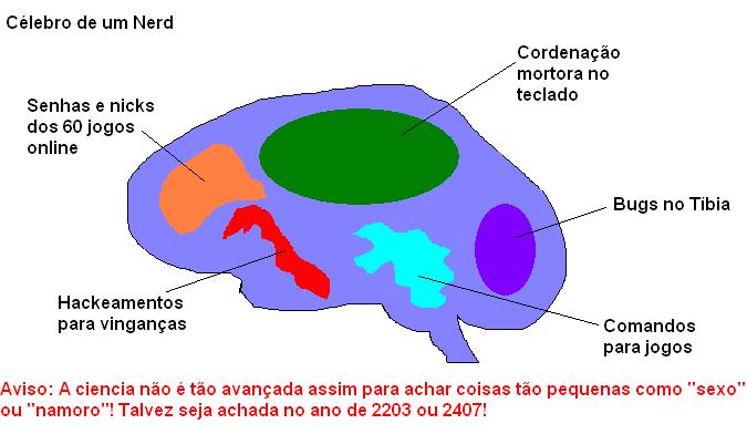 Cérebro de um Nerd