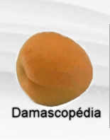Damasco.jpg