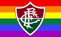 Flag flu gay.png