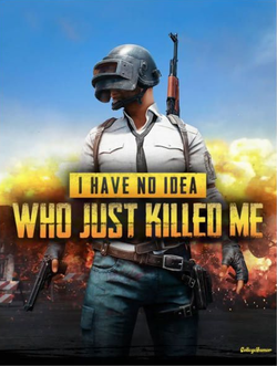 PlayerUnknown's Battlegrounds cover.png