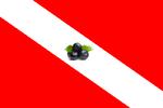 Bandeira do Pará.png