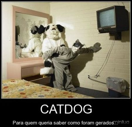 OS PAIS DO CATDOG!.jpg