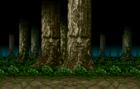 Living Forest.jpg